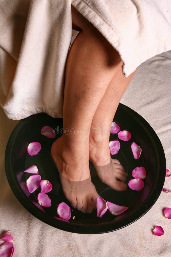 Gambe in una ciotola di acqua con i petali del fiore Stazione termale fotografie stock libere da diritti
