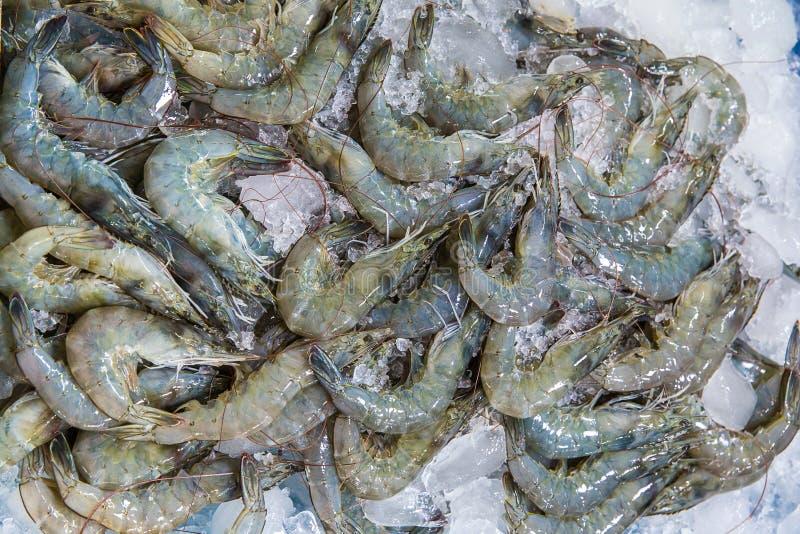 Gamberetti freschi sul ghiaccio su esposizione e sulla vendita nel negozio del pesce gamberetti freschi dalla vista superiore pro fotografia stock