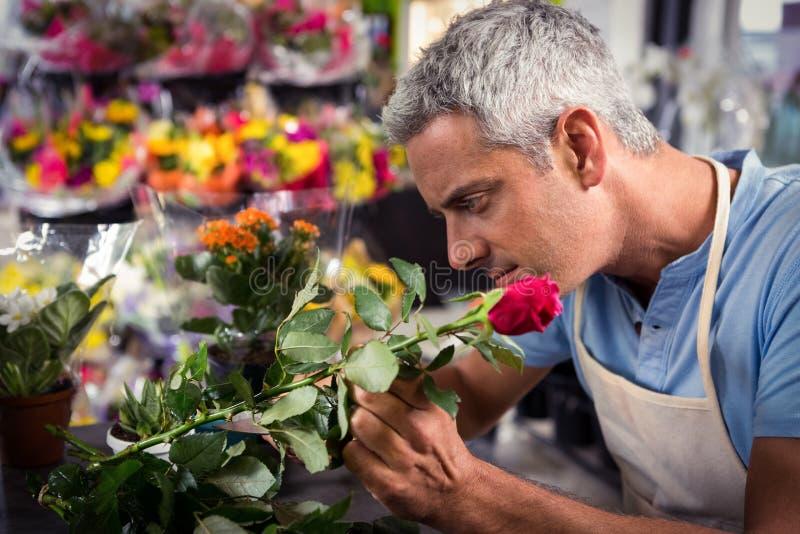 Gambi maschii della guarnizione del fiorista dei fiori al negozio di fiore fotografia stock libera da diritti