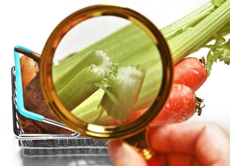 Gambo del sedano nel primo piano di verdure del canestro del compratore tramite una lente d'ingrandimento fotografie stock