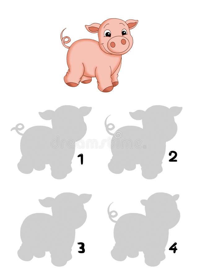 The game of the shades, pig stock images