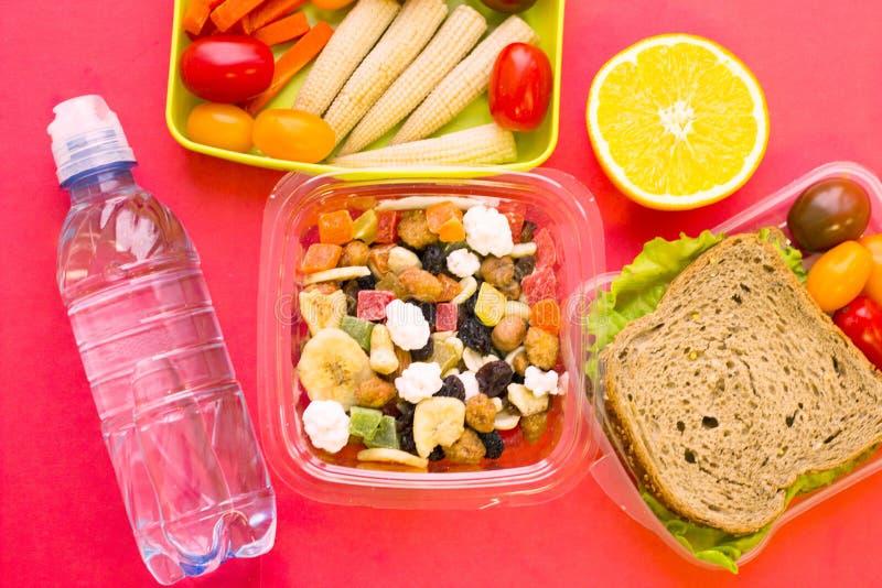 Gamelle d'école Pain, orange, bouteille de l'eau, grains de bébé, carotte et tomates dans le récipient en plastique vert photos libres de droits