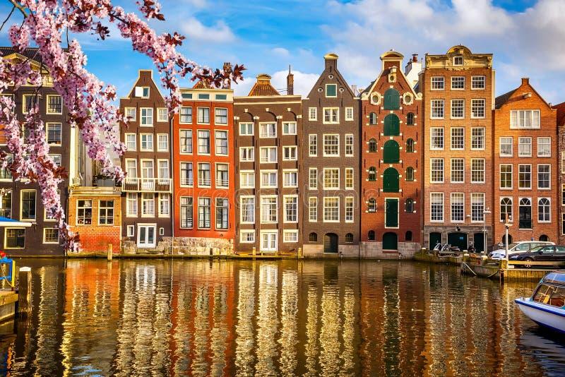 Gamla byggnader i Amsterdam på våren arkivfoto