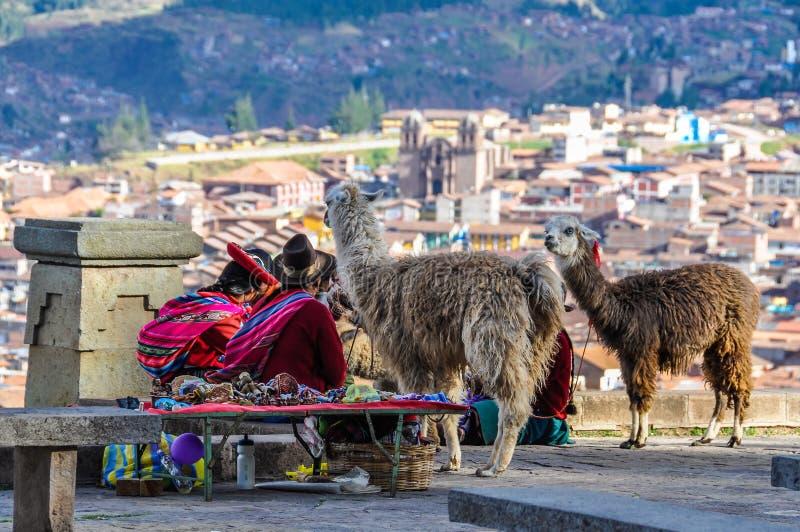 Gamla damer med lamor i Cusco, Peru arkivfoto