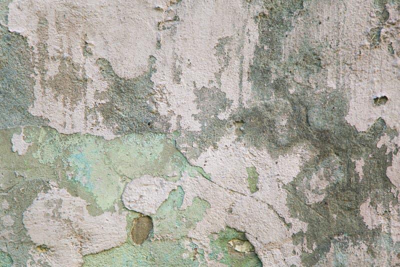 Gamla grå färger och gräsplan befläckt murbrukvägg vägg för bakgrundsgrungetextur arkivbild