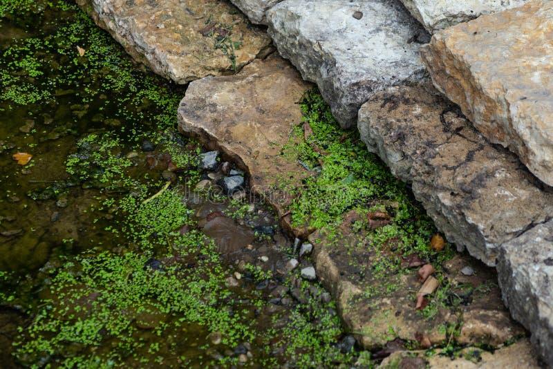 Gamla grungestenmoment, våt jord royaltyfri fotografi