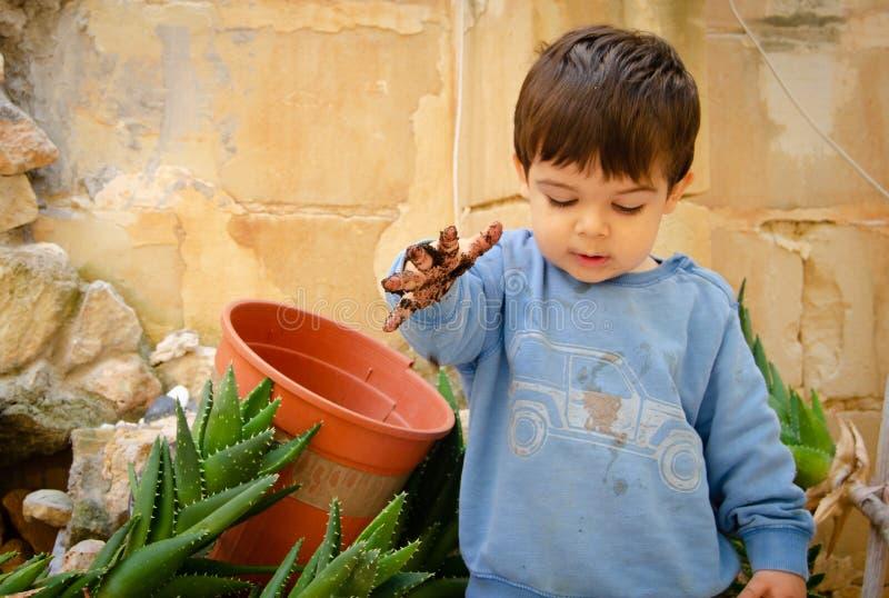 Gamla gulliga två år behandla som ett barn pojken som spelar med dirth och växter royaltyfria foton