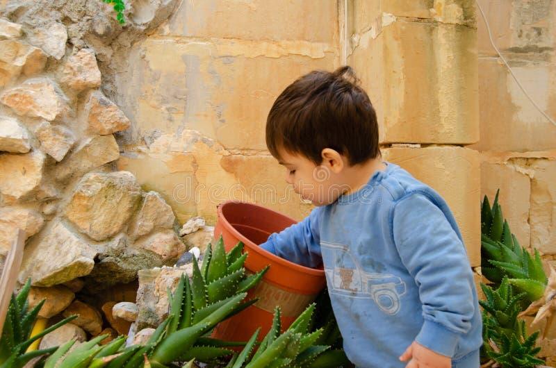 Gamla gulliga två år behandla som ett barn pojken som spelar med dirth och växter royaltyfri fotografi
