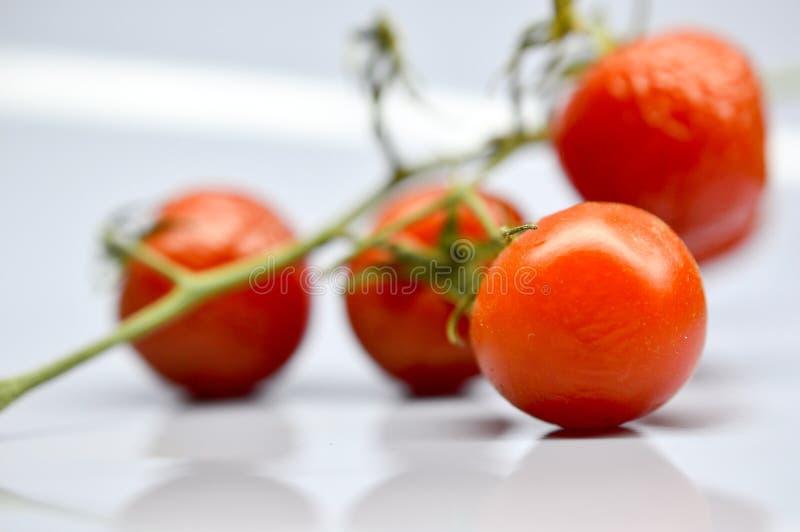 gamla körsbärsröda tomater på en grå bakgrund fotografering för bildbyråer