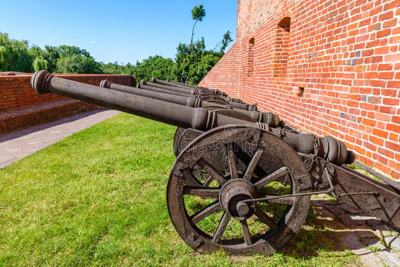 Gamla kanoner i grönområdet av den Teutonic slotten i Golub-Dobrzyn royaltyfria bilder