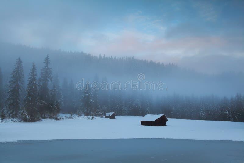 Gamla kojor i alpin skog för vinter royaltyfri fotografi