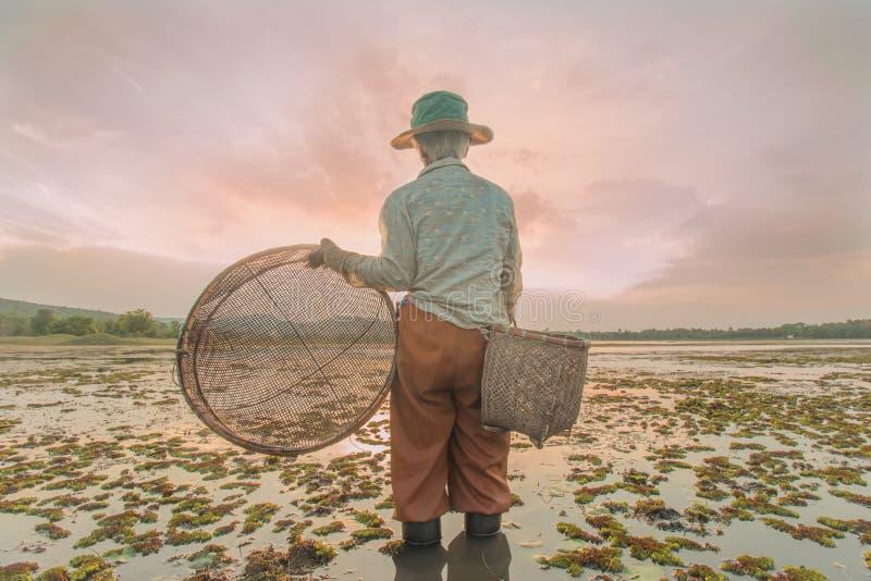 Gamla kvinnor som söker efter fisken arkivfoton