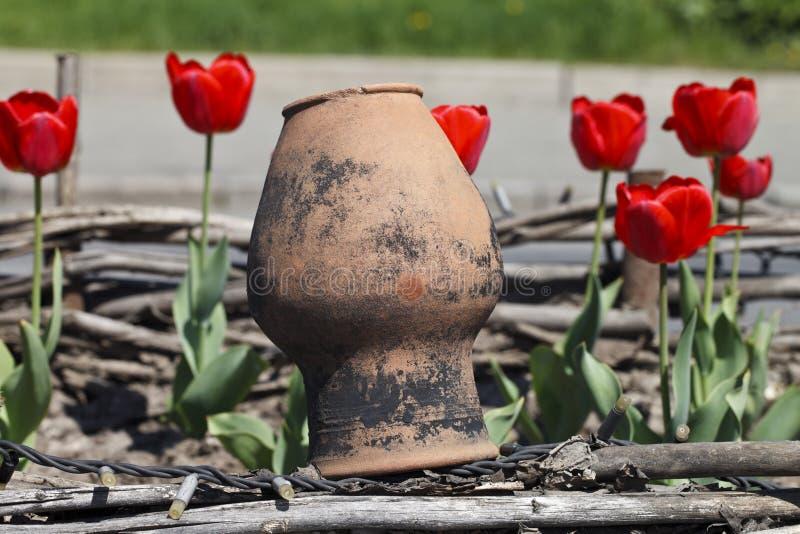 Gamla leratillbringare och tulpan royaltyfri fotografi