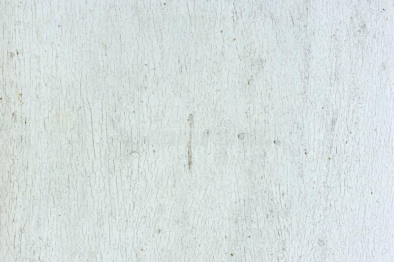 Gamla spruckna ljusa Gray Wood Texture royaltyfri foto