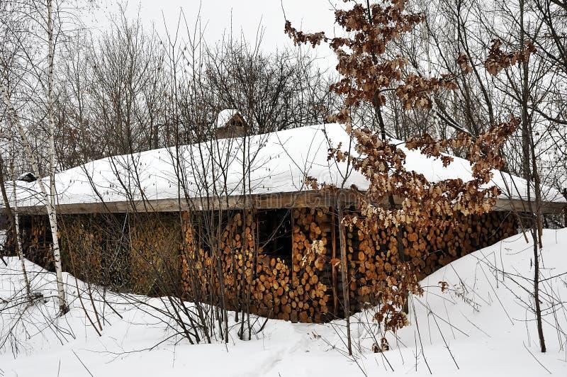 Gamla tr?hus under ett halmt?ckt tak som t?ckas med sn?- och vedtravest?llningen n?ra gamla tr?d royaltyfri foto