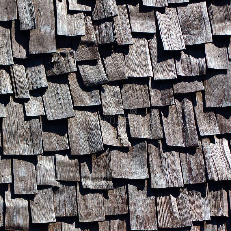 Gamla träsinglar arkivbild