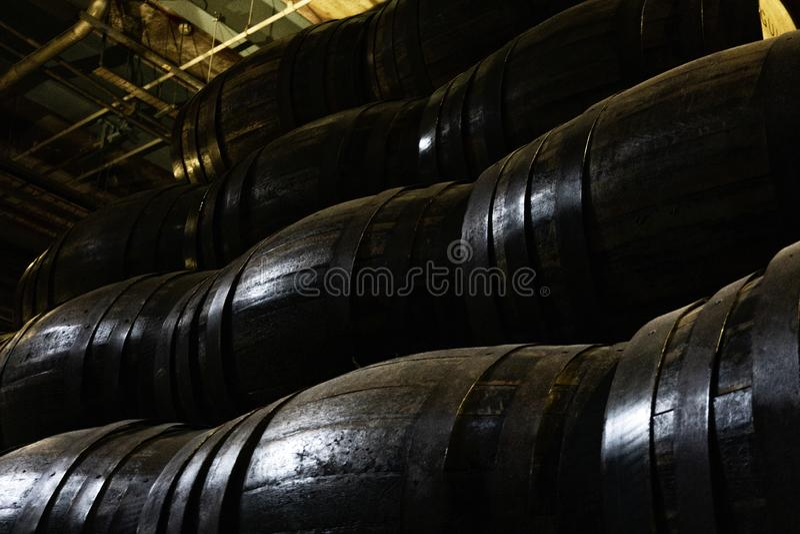 Gamla tr?trummor f?r whisky eller vin fotografering för bildbyråer