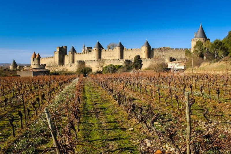 Gamla walled citadell och vinyards Carcassonne france royaltyfri bild