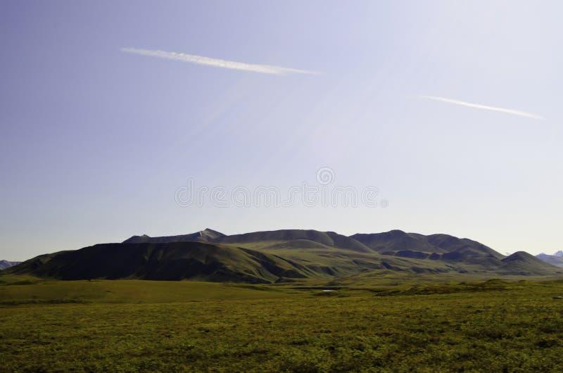 Gamma Alaska dei ruscelli fotografie stock libere da diritti