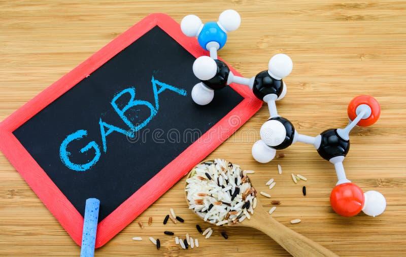 Gamma-Aminobutyric zuur (GABA) in ontkiemde rijst stock afbeelding