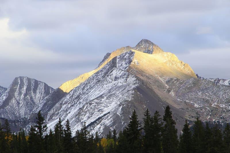 Gamma di montagne dell'ago, regione selvaggia di Weminuche, Colorado fotografia stock