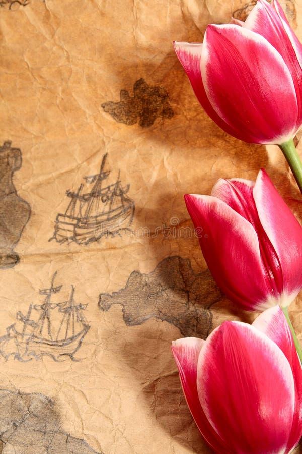 gammal översikt royaltyfri illustrationer