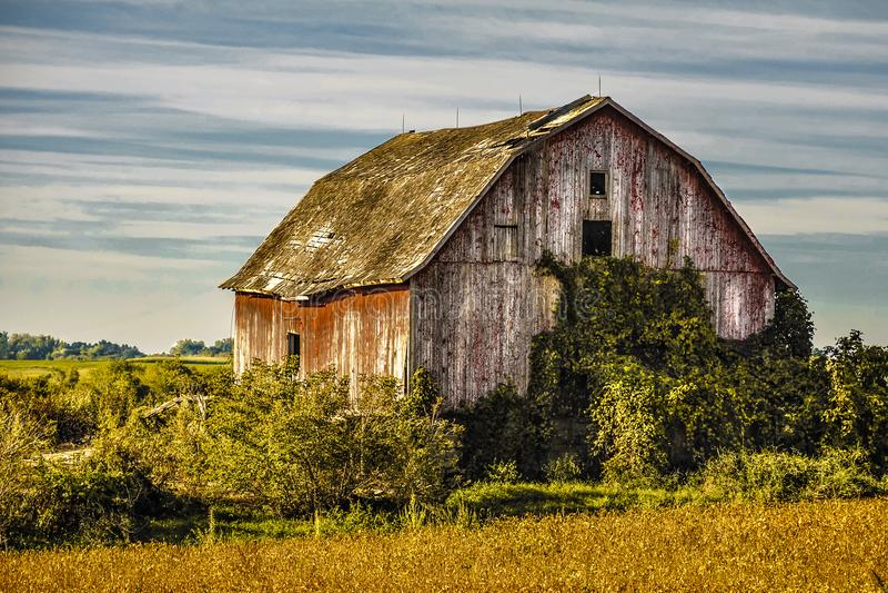 Gammal Abandend ladugård i lantliga nordostliga Iowa arkivbilder