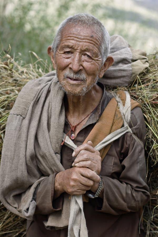 gammal asiatisk bonde royaltyfria foton