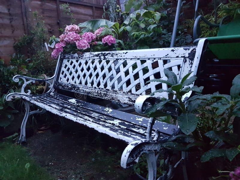 Gammal bänk i trädgården royaltyfria foton