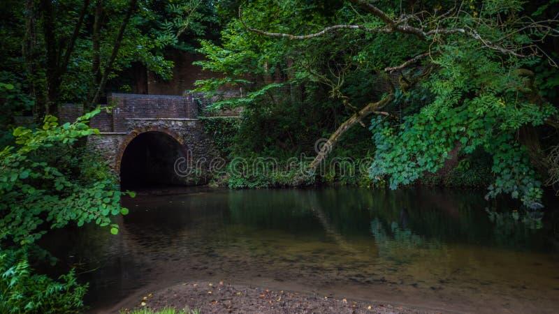 Gammal bro över ramfloden i en liten stad i Dorset, UK fotografering för bildbyråer