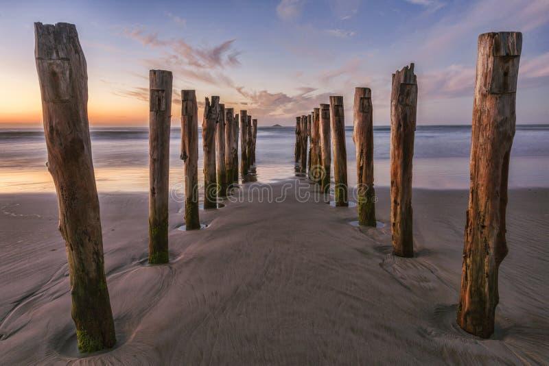 Gammal bryggaSt Clair Beach Dunedin royaltyfri fotografi