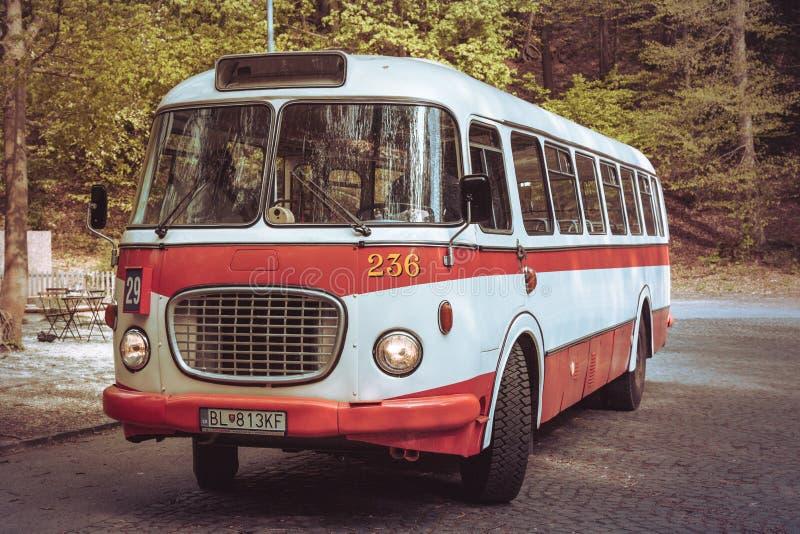 Gammal bussmedeltransport royaltyfri fotografi