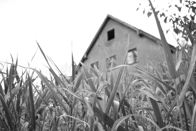 Gammal byggnad i den bayerska skogen royaltyfria foton