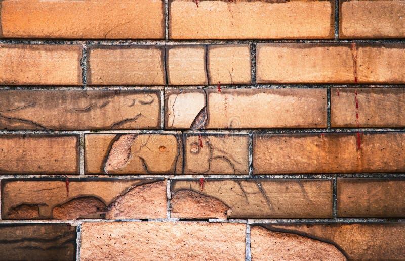 Gammal cladding för yttre vägg med tegelplattor royaltyfria foton