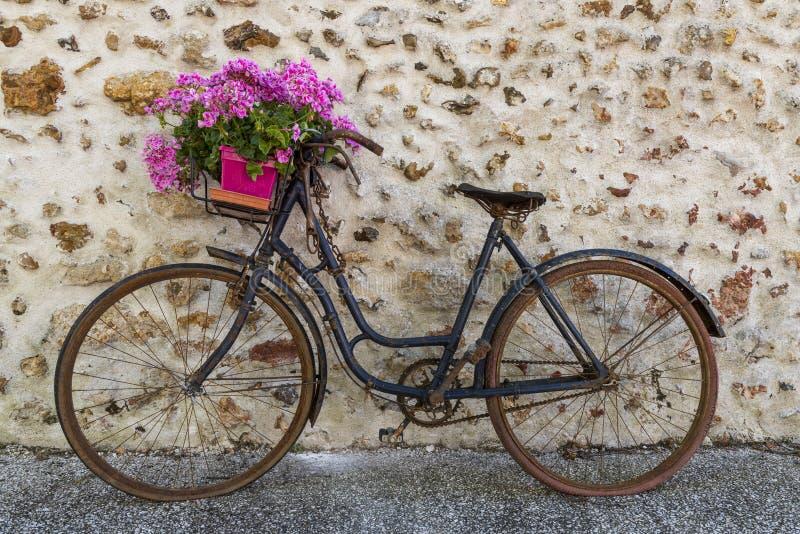 Gammal cykel med blommor royaltyfria bilder