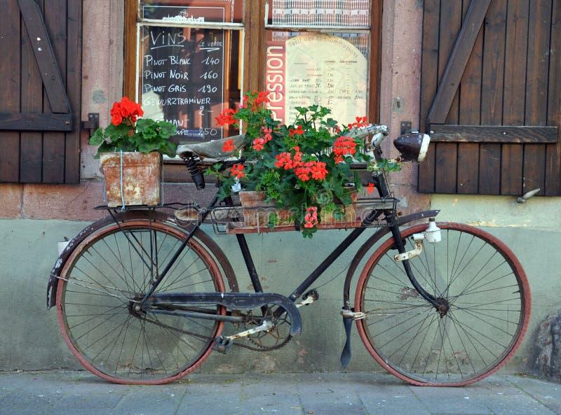 gammal cykelfransman royaltyfri bild