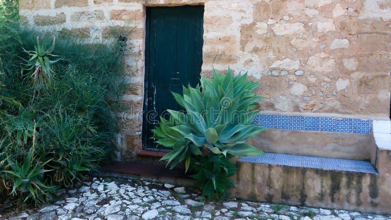Gammal dörr med stenbänken och agaves royaltyfria foton