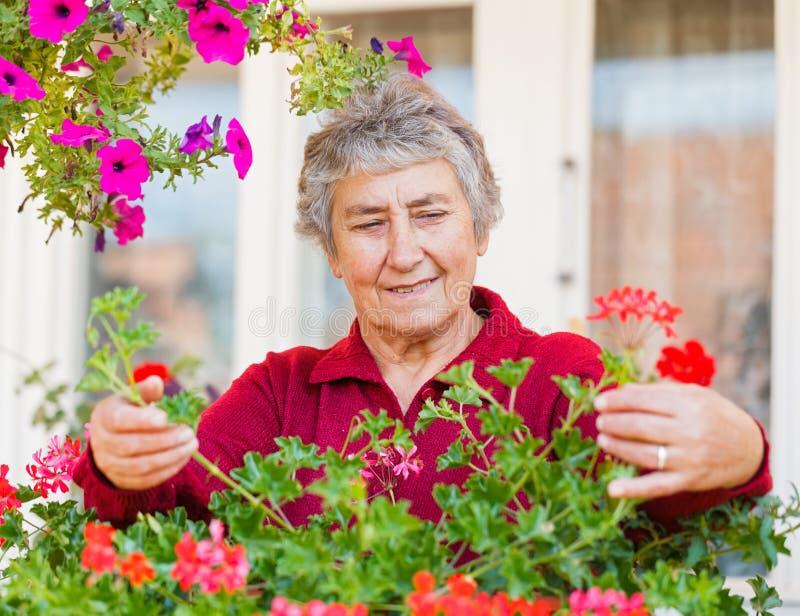 Gammal dam med blommor royaltyfri fotografi
