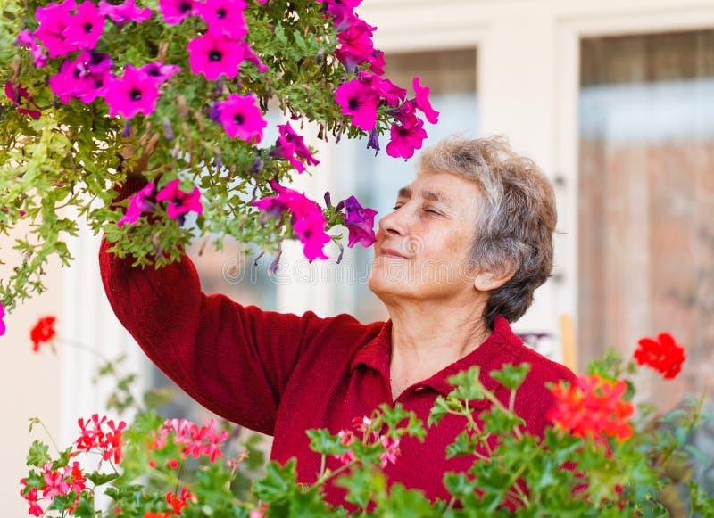 Gammal dam med hennes blomma royaltyfria foton