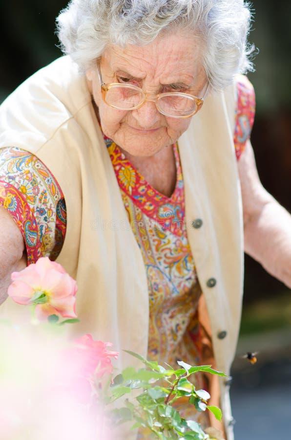 Gammal dam med hennes färgrika blommor arkivbilder