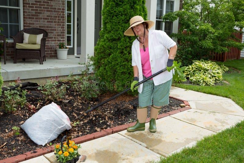 Gammal dam på arbete i de trädgårds- lokalvårdblomsterrabatterna royaltyfri foto