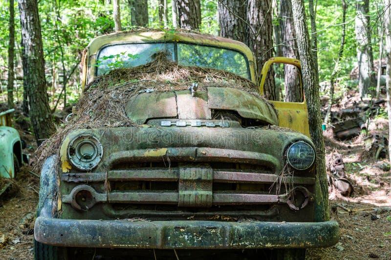 Gammal Dodge uppsamling med den gula dörren arkivbilder
