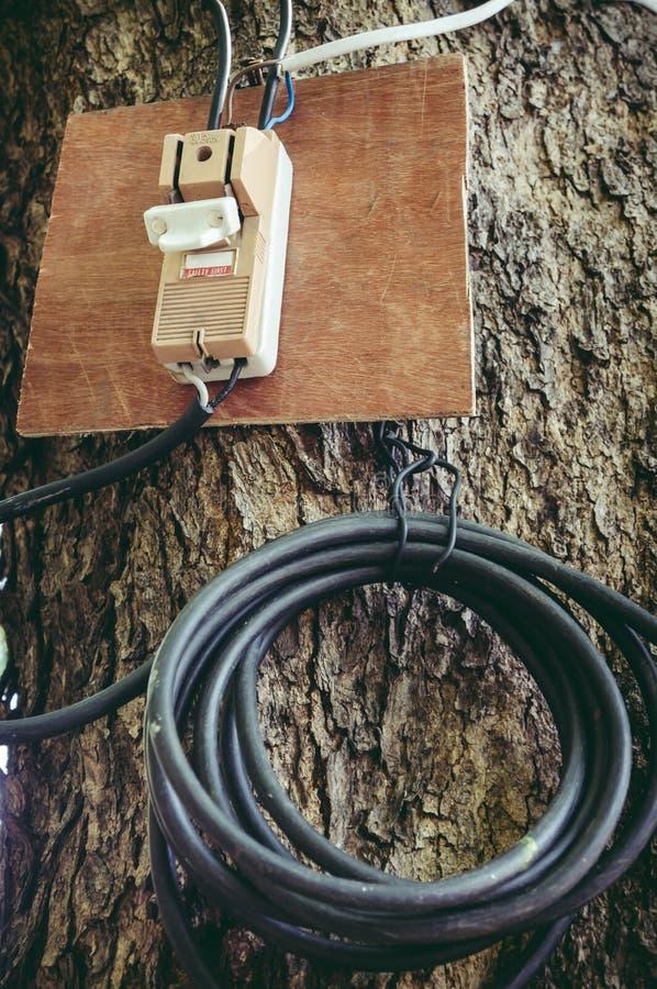 Gammal elektrisk utklipp- eller strömkretssäkerhetsbrytare för säkerhet på trädtrun royaltyfria bilder