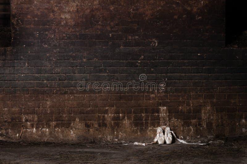 Gammal fästning för källare royaltyfri fotografi