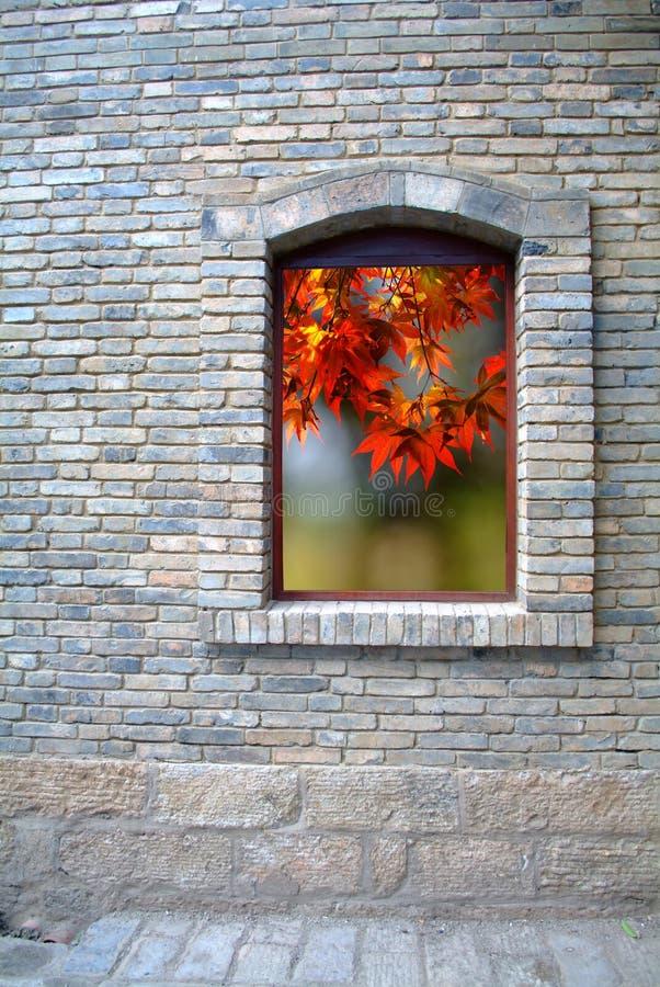 Gammal fönster och lönnlöv fotografering för bildbyråer