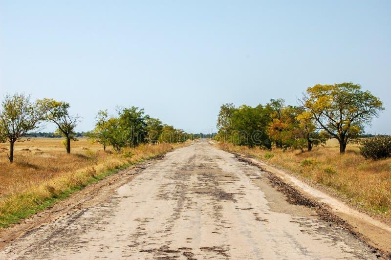 Gammal förstörd väg till stäppen Automatiskväg i Savannah royaltyfria foton