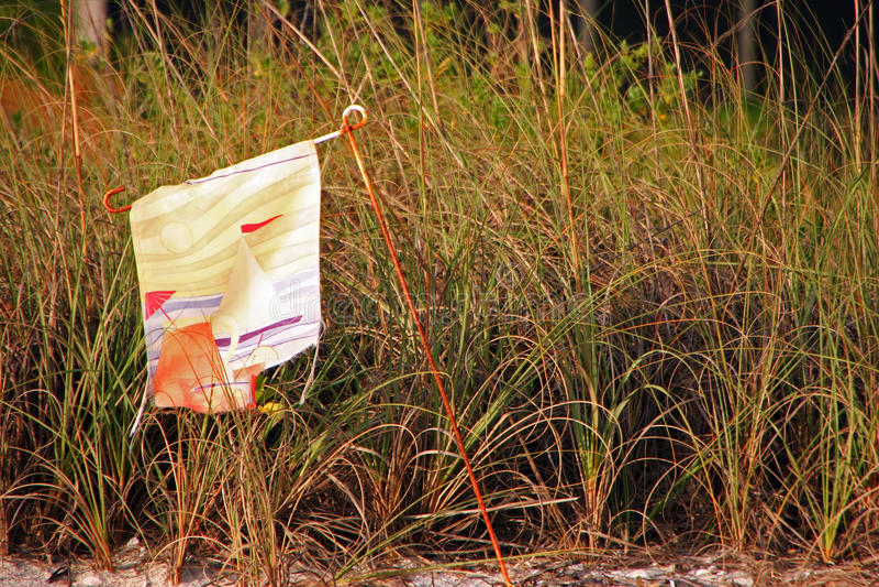 Gammal flagga på strand royaltyfria foton