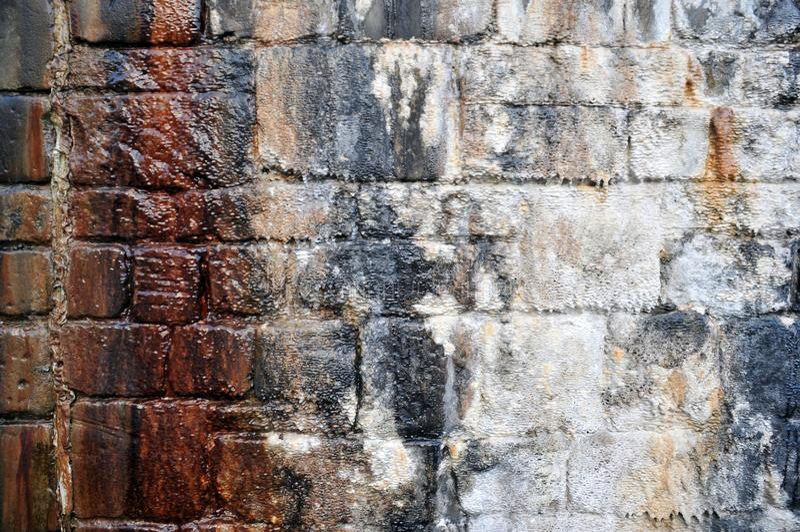 Gammal fuktig strimmig stenvägg med vit och brunt befläckte färger royaltyfria bilder