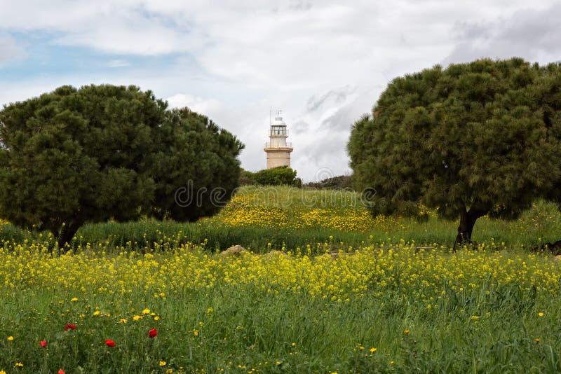 Gammal fyr i Paphos, Cypern royaltyfria bilder