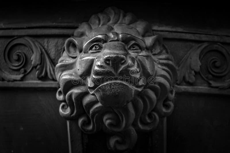 Gammal garnering för metalllejonhuvud Arkitekturdetalj av tappningdörren Closeup för lejonframsidaknopp Djurt huvud på ingången a arkivbild